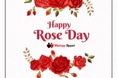 rose day wishes image