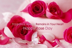 rose-day-4
