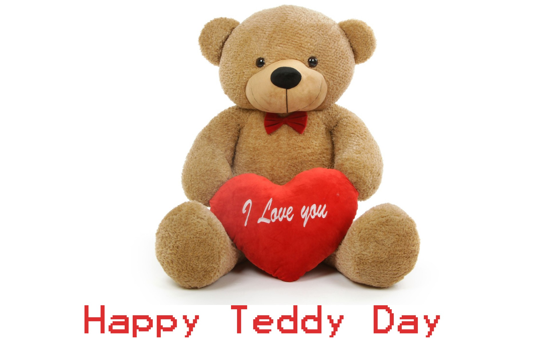 teddy-Day-pics