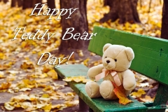 teddy-bear-day-hd-photos-wallpapers-download-free