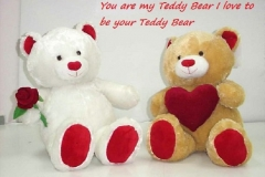 teddy-day-sms